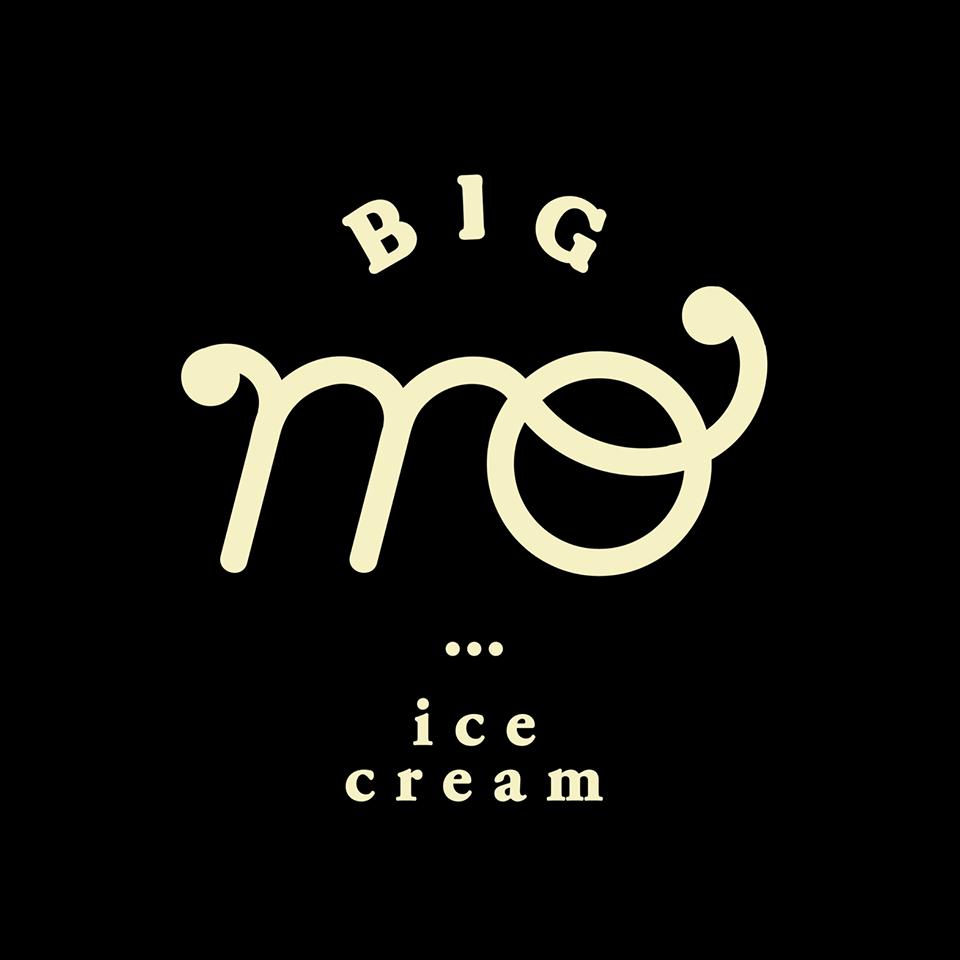 logo_BIGMO